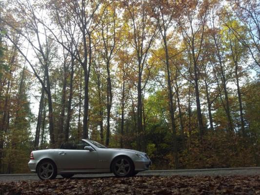 Der SLK im bunten Herbstlaub